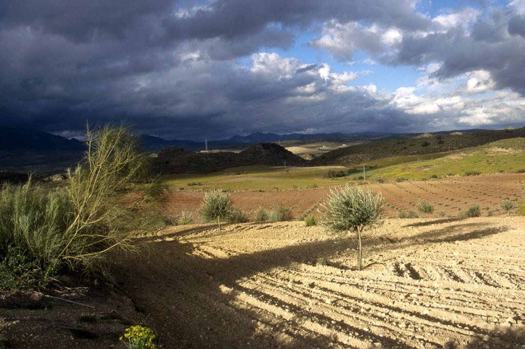 Andalousie, le jour alternait entre le soleil chaud et la violence des orages.